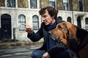 sherlock-season-4-sherlock-with-dog